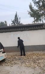 小樵镇组织农村清洁行动